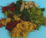 XGM166 - Mixed Lichen 80g